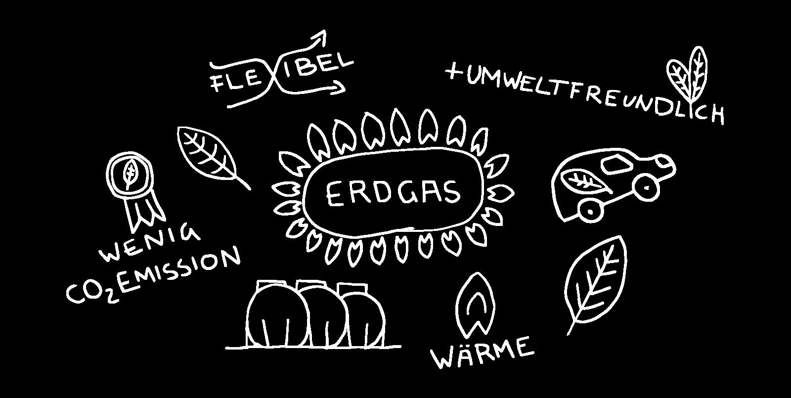 EAM Erdgas nachhaltig umweltfreundlich