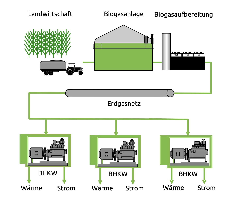 EAM Energiedienstleistungen Biomethanlieferung