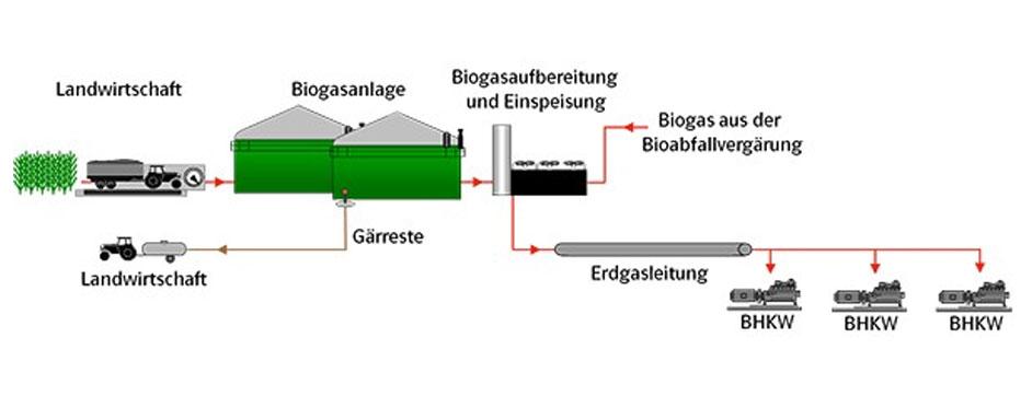 EAM Bioenergie Nachwachsende Rohstoffe